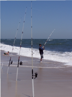Shore Fishing at Assateague