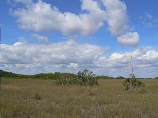 Big Sky Florida Style