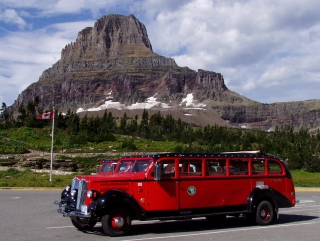Red Buses at Glacier NP